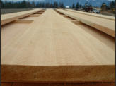 Fine Grain Clear Inland Cedar