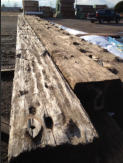 You can see how the WIllamette River eroded the wood around the knots over the past 90 years.